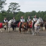Mounted Drill Competitions