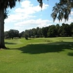Golf Course in Haile Plantation
