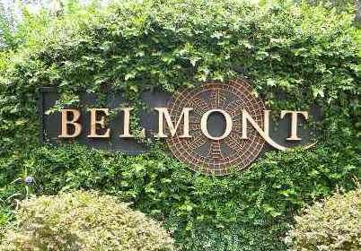 Belmont Neighborhood in Jonesville