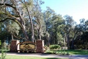 Hawks Ridge in Alachua County Florida
