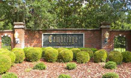 Cambridge Forest Community in SW Gainesville