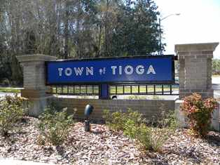 Town of Tioga Homes for Sale - Gainesville FL
