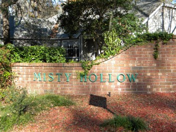 Homes for Sale in Misty Hollow